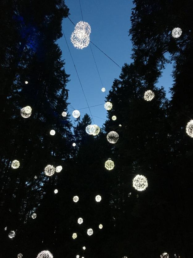 Capilano Lights 1